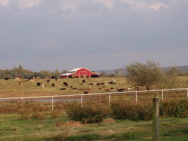 Oklahoma Red Barn