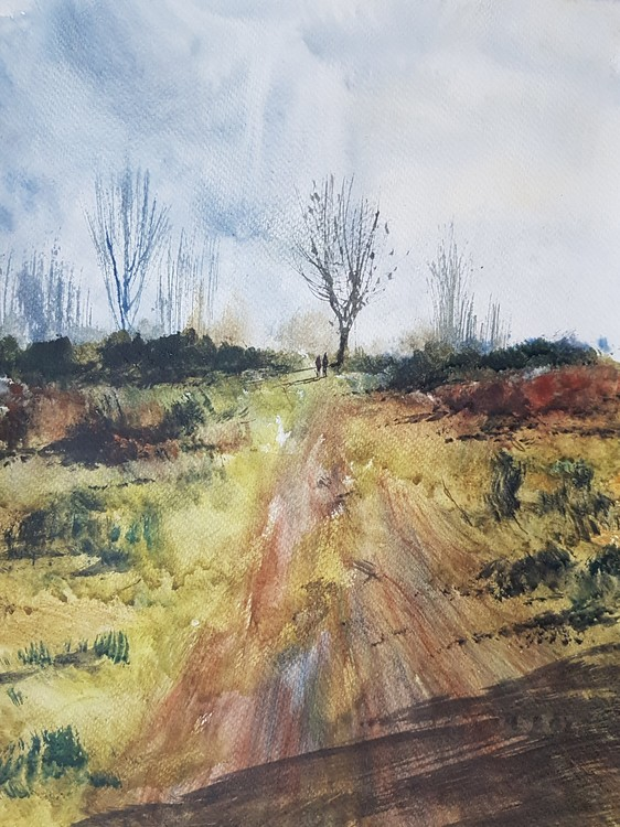 Nr Streetly Gate Watercolour Painting by Steven Cronin