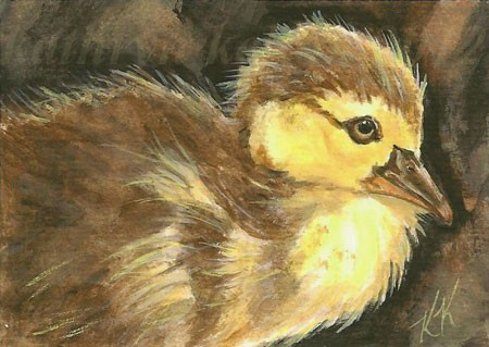 Duckling ACEO