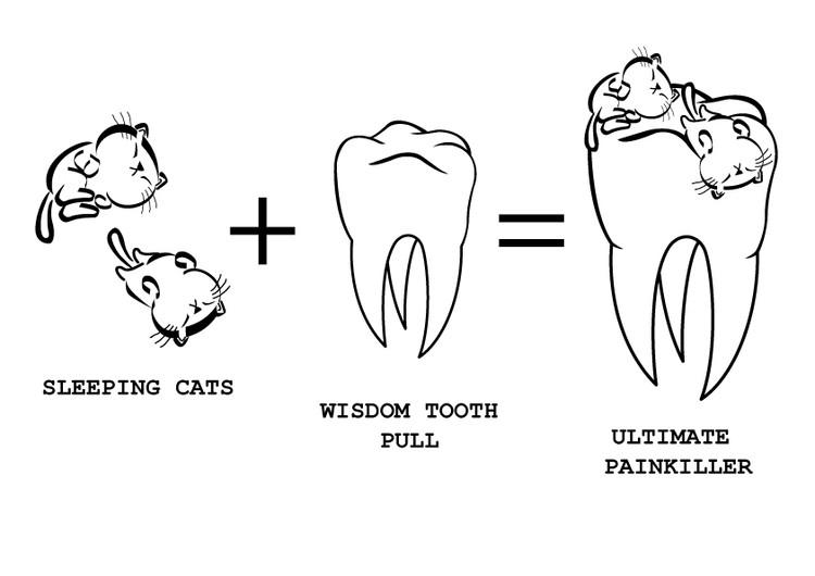 Dentist Illustration
