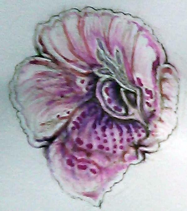 Foxglove Watercolor