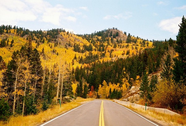 Fall Viewing
