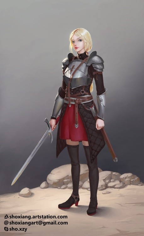 Medieval Knight Concept