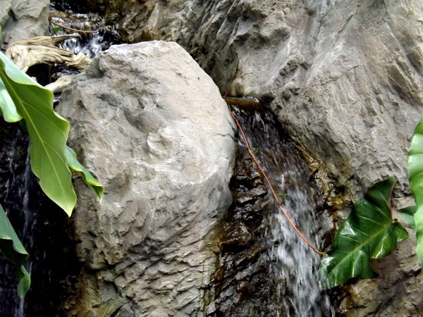 Little Waterfalls In The Green House (Three)