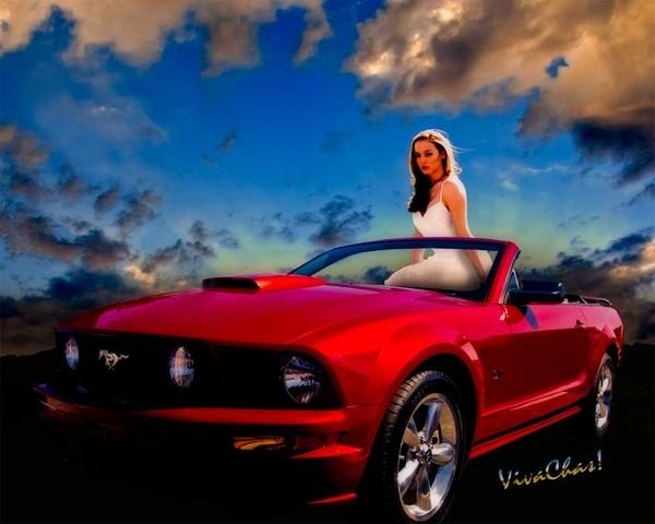 Mustang Rider