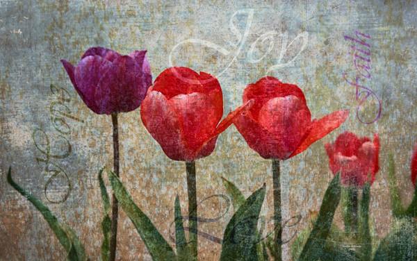 Joy with Tulips
