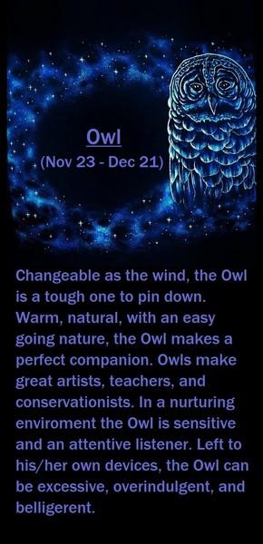 Native American Zodiac Sign, (Owl)