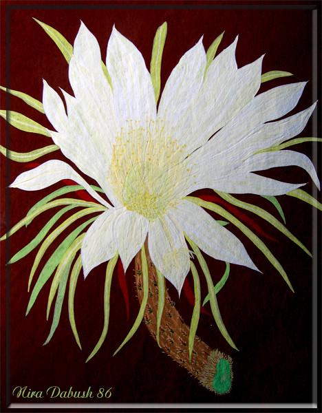 24 Hours Flower