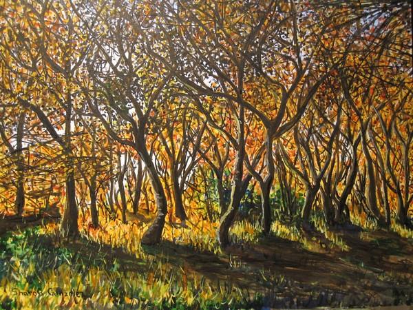 Trees Fall Watercolor