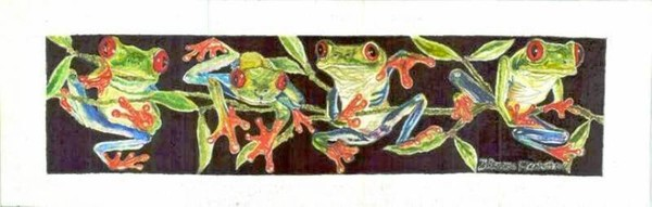A fringe of red eyed tree frogs