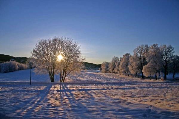 Cold winter I