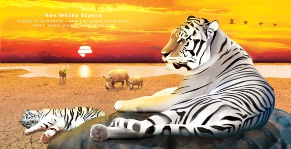the white tigers