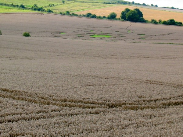 mystery crop circles