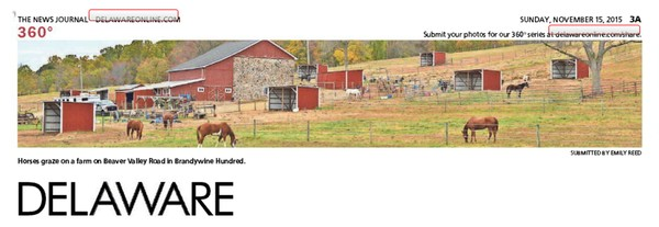 266th News Journal Panorama-Horse Farms