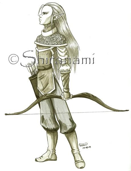 Male Wood-Elf Archer