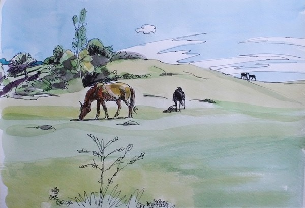 spring and horses