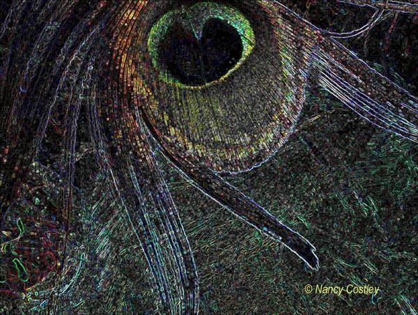 Glowing Edges Featherpaint