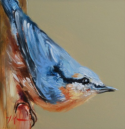 Oil painting nuthatch