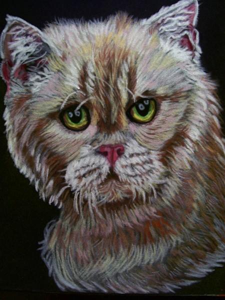 Pastel of Rex cat