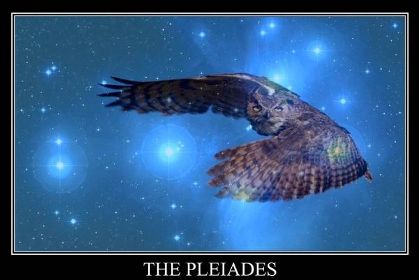 pleiades6