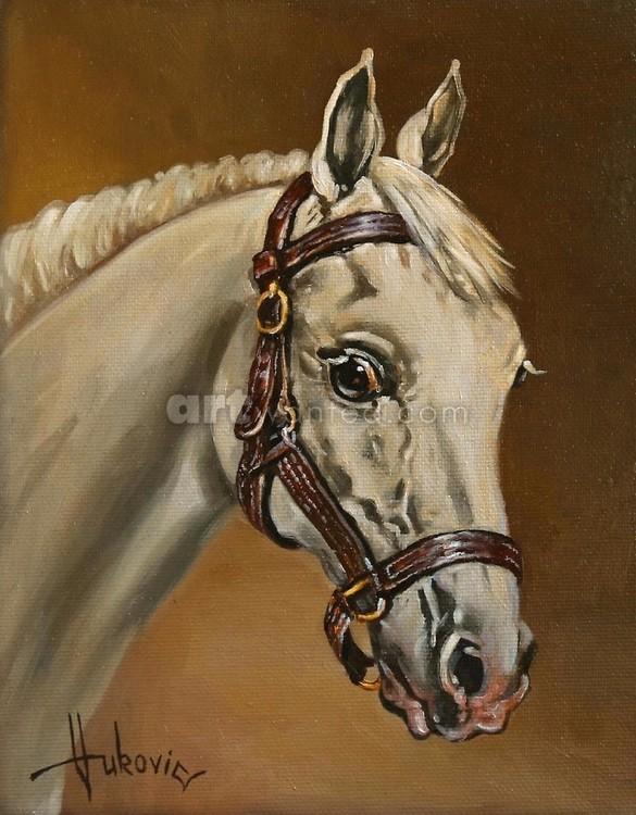White Horse - portrait