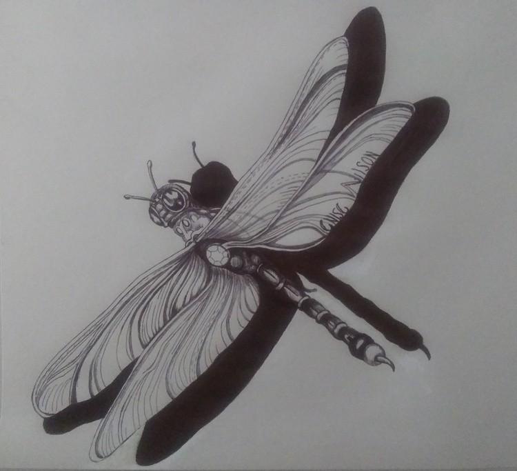 20200803 120015 cynthia's dragonfly