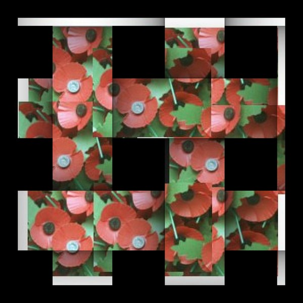 We Remember the Fallen