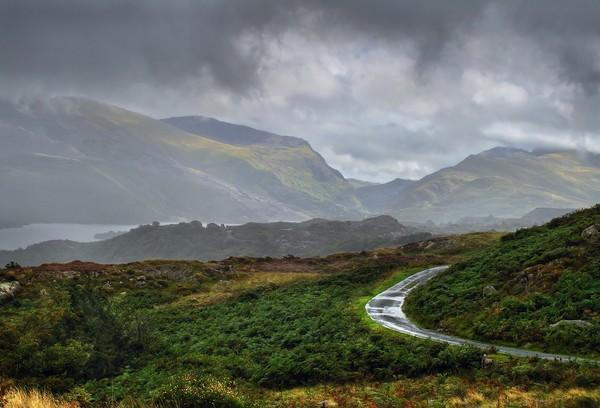 A PHOTO IN THE RAIN