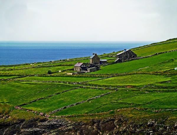 Irish Farm I