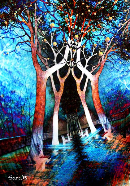 Dreaming Trees