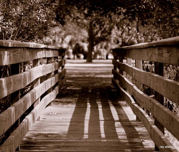 the bridge at al lopez park