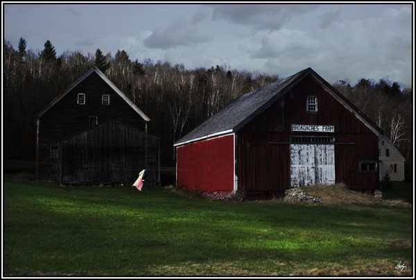 Nightgown on a Line - Broadacres Farm