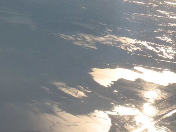Louisiana Swamps From The Air