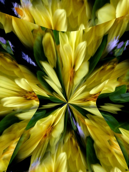 Yellow and Purple Floral Abstract (Fifty Two)