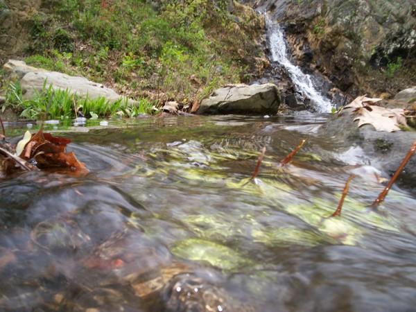 West Virginia Waterfall