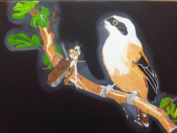 Feast Painting Rufous Baked Shrike