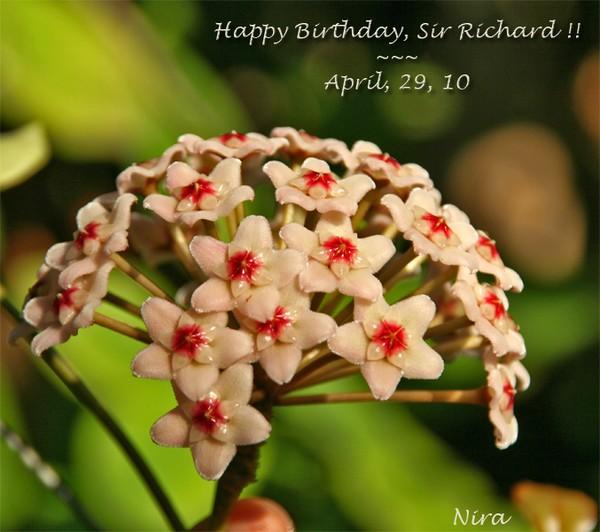 Happy birthday, Sir Richard !! ~