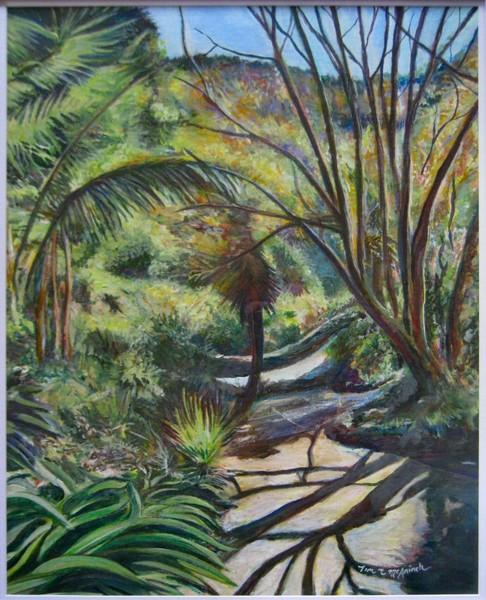 Wellington Botanical Garden Pathway.
