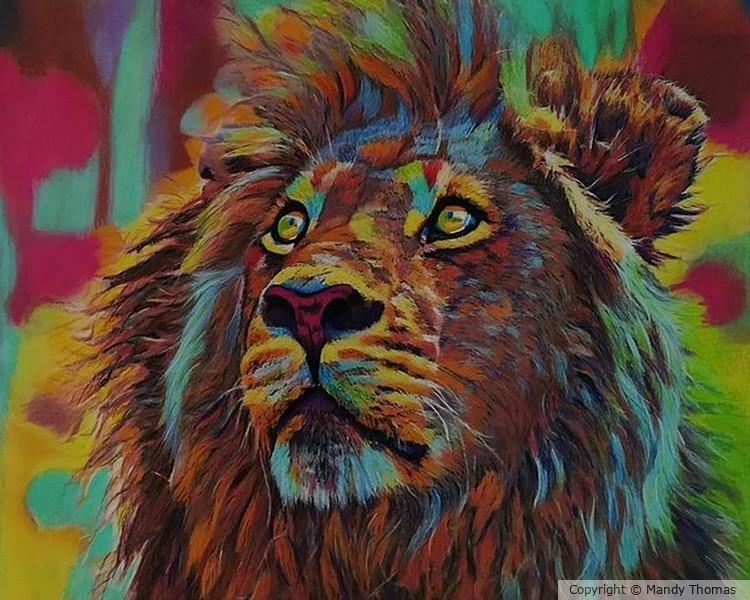 Lion  KUANGALIA by Mandy Thomas