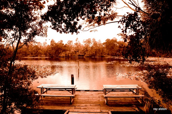 picnic benches by the pond