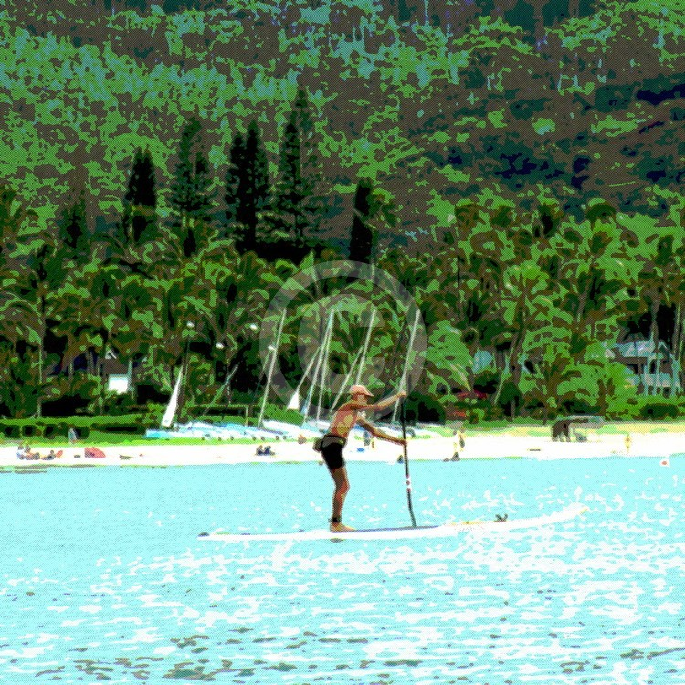 Paddle Hanalei