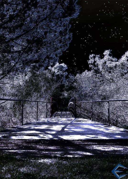 Moon Shadows