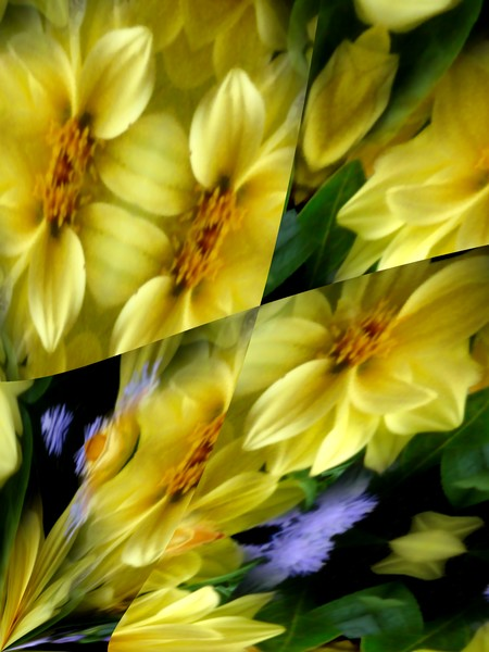 Yellow and Purple Floral Abstract (Fifty One)