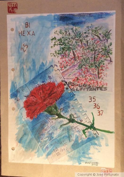 Bi Hexa
