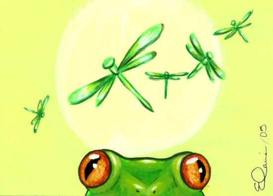 I Spy Dragonflies