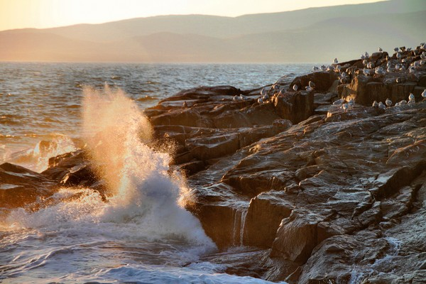 Late Evening Sun and Surf at Schoodic Point