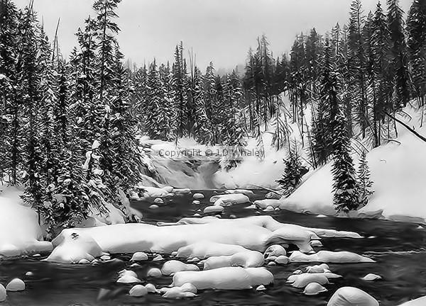 A Yellowstone waterfall in Winter