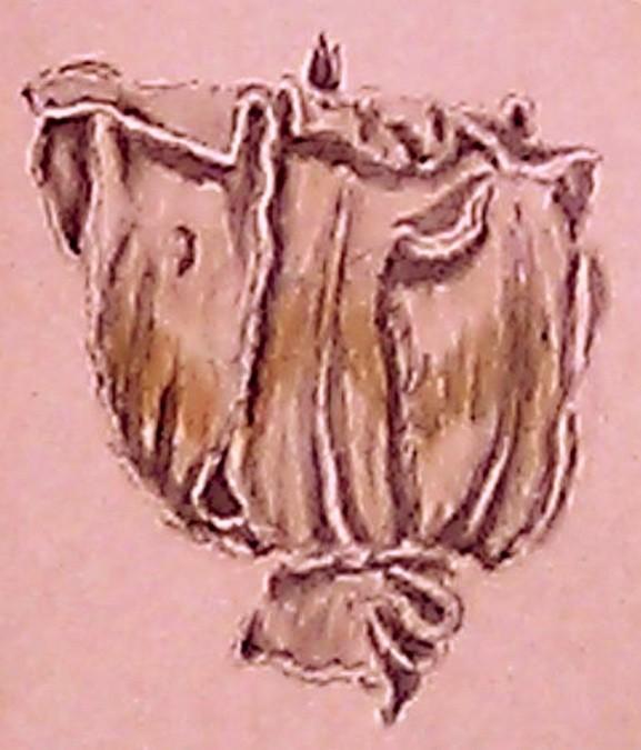 Tulip Tree Flower Drawing