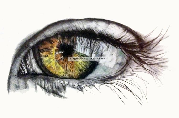 eye - biro on paper
