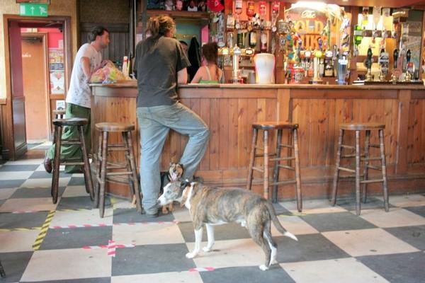 Old Duke Pub Inside